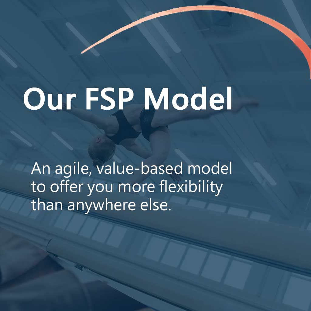 Flexible FSP Data Service Provider